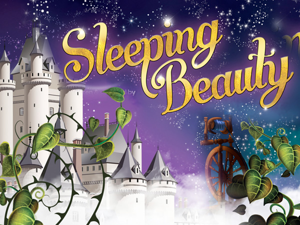 Pantomime at The Roses Theatre