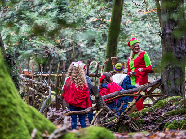 Christmas at Puzzlewood