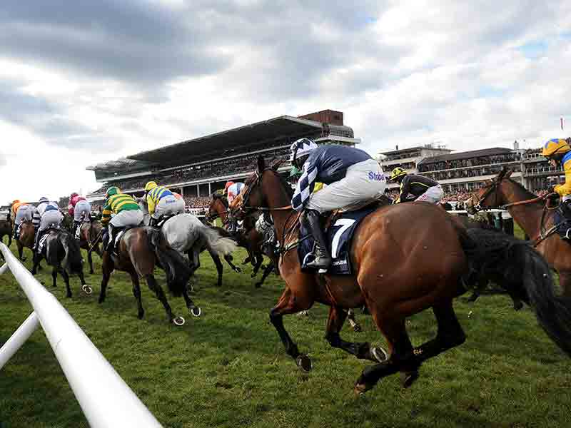 Cheltenham National Hunt Festival 2019