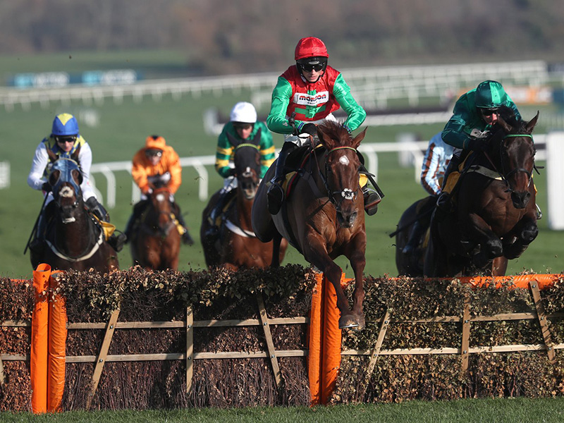 Racing at Cheltenham