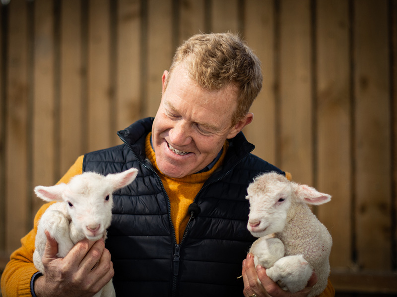 Lambing at Adam Henson's Cotswold Farm Park