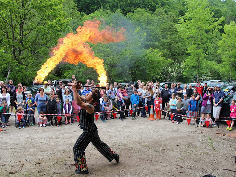 Bank holiday events in the Forest of Dean