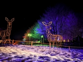 Christmas events in Gloucestershire