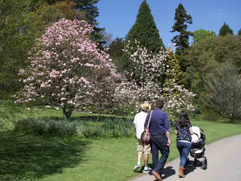 Mothering Sunday at Batsford Arboretum