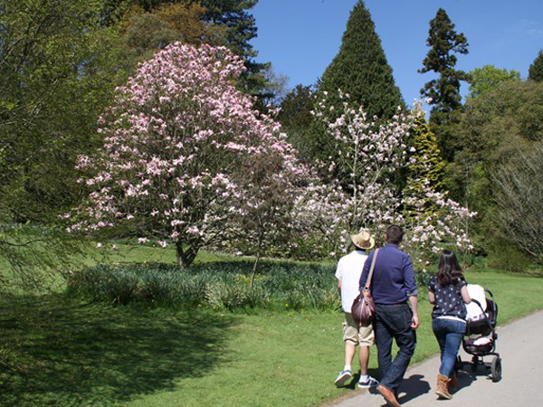 Mother's day at Batsford Arboretum
