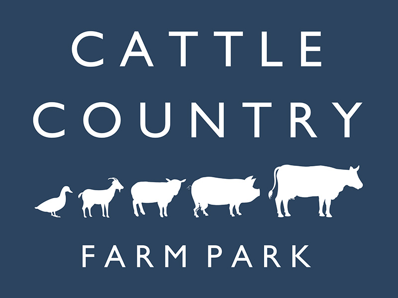 Lambing Live during Half Term at Cattle Country