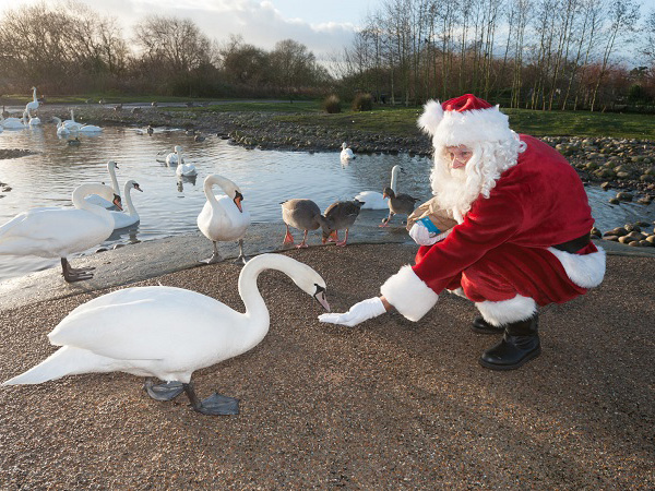 Father Christmas in Gloucestershire
