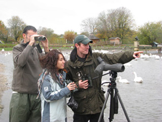 Events at WWT Slimbridge