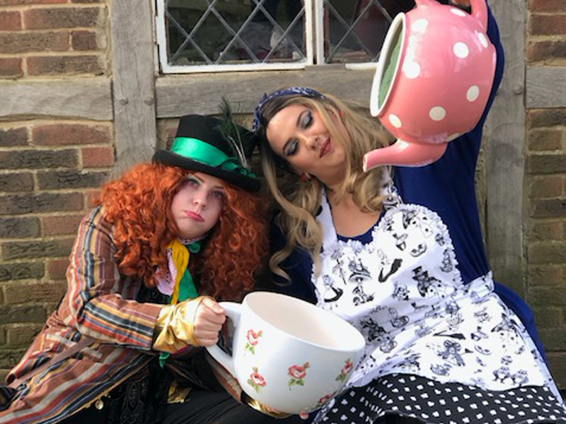 Mad Hatters Tea Parties at Prinknash  Bird & Deer Park