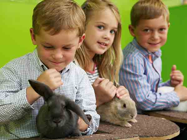 Easter at Adam Henson's Cotswold Farm Park