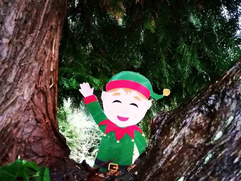Christmas Events at Batsford Arboretum