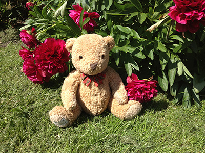 Teddy Bear Tuesdays at GWSR