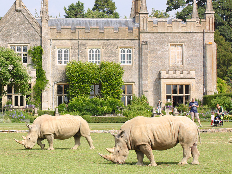 Events at Cotswold Wildlife Park