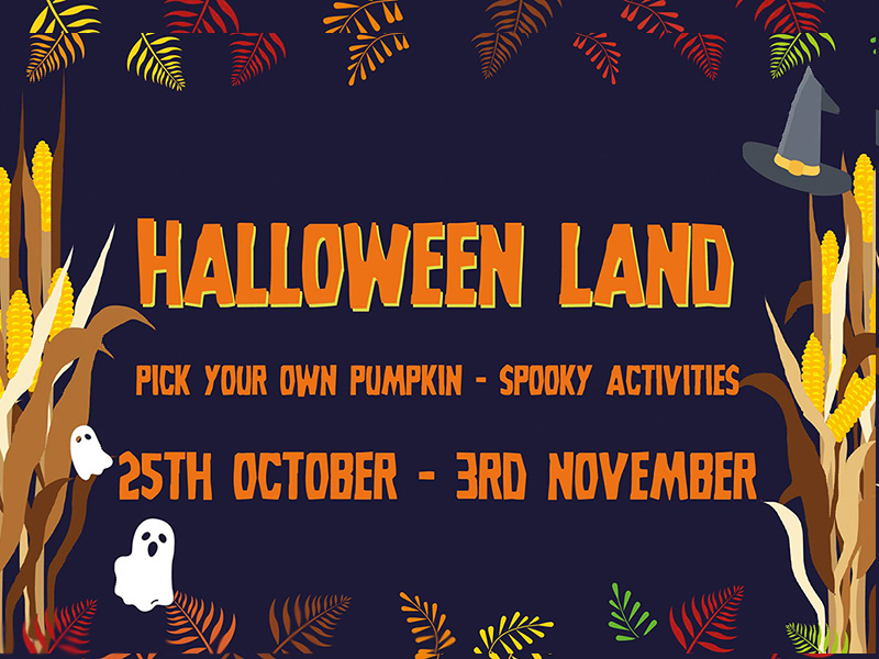 Halloween Events at Cotswold Farm Park