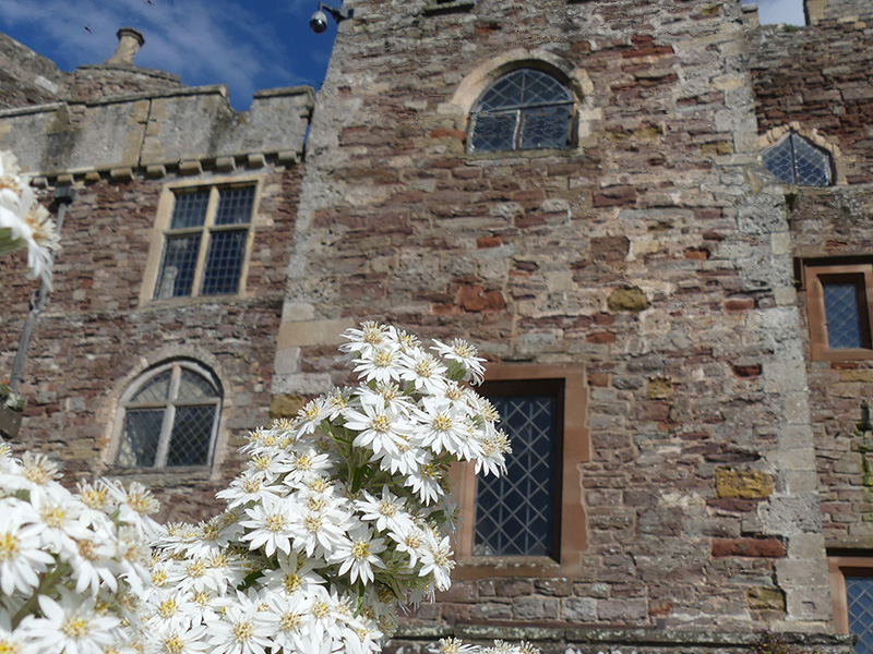 Whats on  at Berkeley Castle