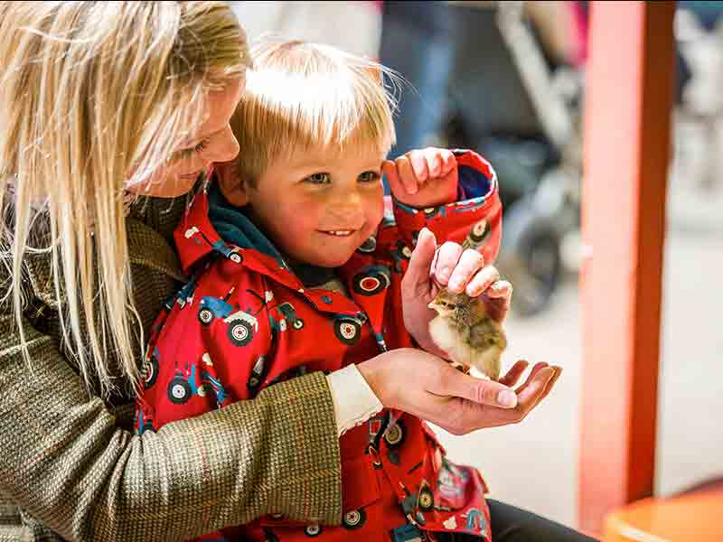 Mother's Day at Adam Henson's Cotswold Farm Park