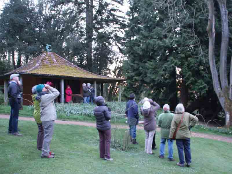 Events at Batsford Arboretum