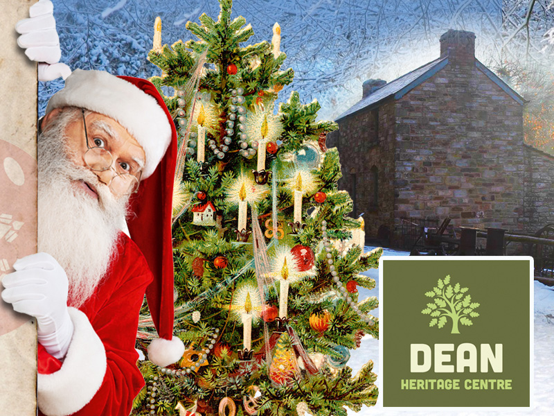 Santa in the Forest of Dean