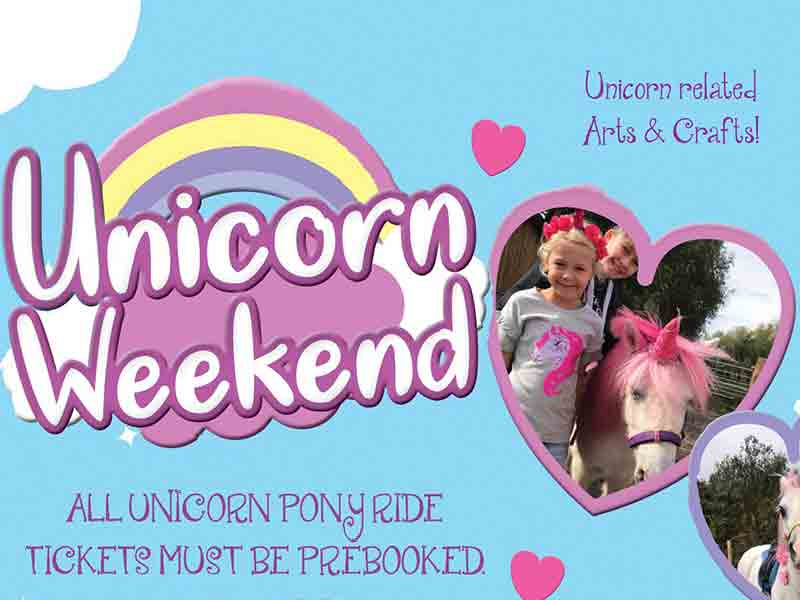 Unicorn Weekend at Cattle Country