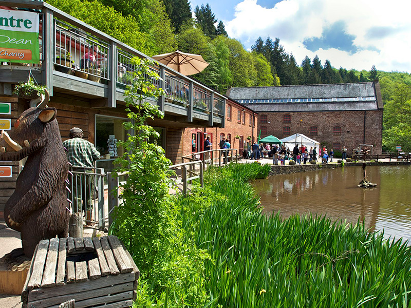 Summer at the Dean Heritage Centre, Forest of Dean