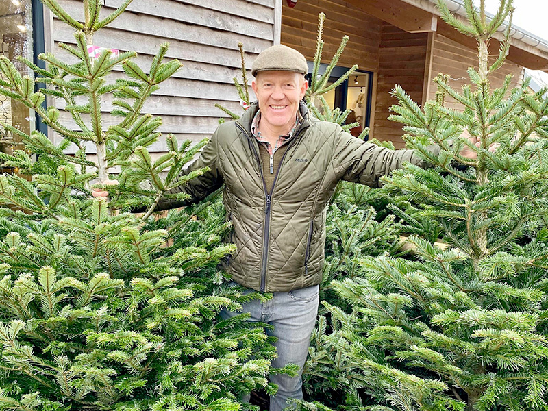 Christmas tree sales in Gloucestershire