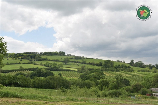 Hayles Fruit Farm near Winchcombe in the Cotswolds