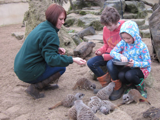 Christmas presents with a difference at Cotswold Wildlife Park