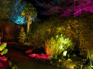 Enchanted evenings at Hidcote