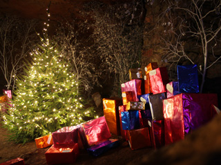 Clearwell Caves Christmas Fantasy - A Perfect Christmas Tree