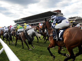 Blow those January Blues away at Cheltenham Racecourse