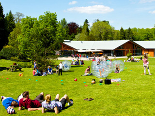 Great Summer Offer at Whitemead Forest Park