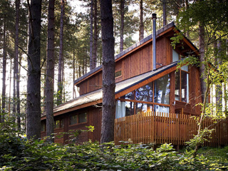 Magical new woodland cabins  and treehouses launched at The Forest of Dean