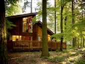EXCLUSIVE! Offer of the Week: 10% off Forest Holidays Cabin