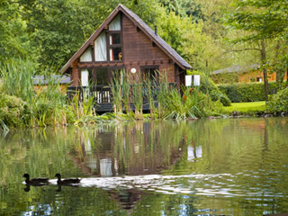 ACCOMMODATION REVIEW Whitemead Forest Park Cabins Forest of Dean