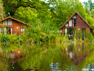 Save £150 on a family break this summer at Whitemead Forest Park
