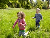 Kids roam free this summer at Westonbirt