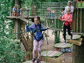 NEW Tree Top Junior at Go Ape in the Forest of Dean