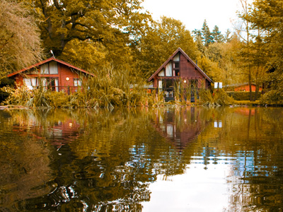 Get ready for Autumn Breaks at Whitemead Forest Park