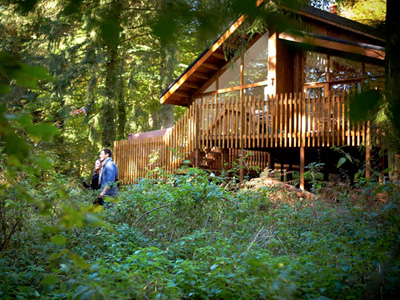 Fabulous Offer 10% off Forest Holidays Cabins