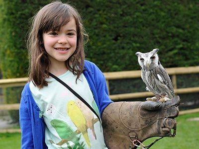 Close Encounters over May Bank Holiday at Birdland