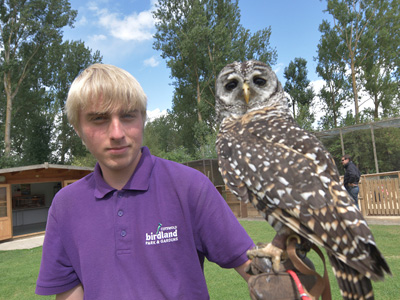 International Owl Awareness Day at Birdland