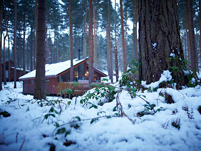 Enjoy 10% off Boxing Day breaks with Forest Holidays