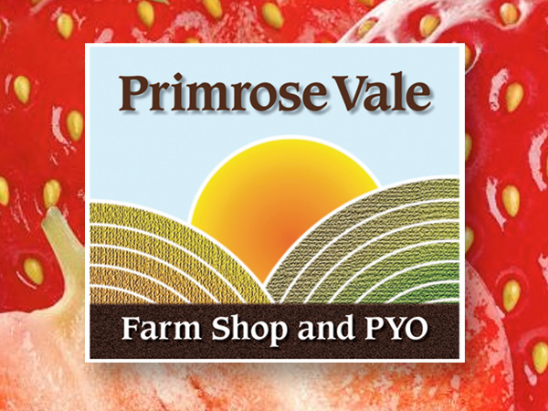 EXCLUSIVE OFFER: Free cream at Primrose Vale PYO Strawberries