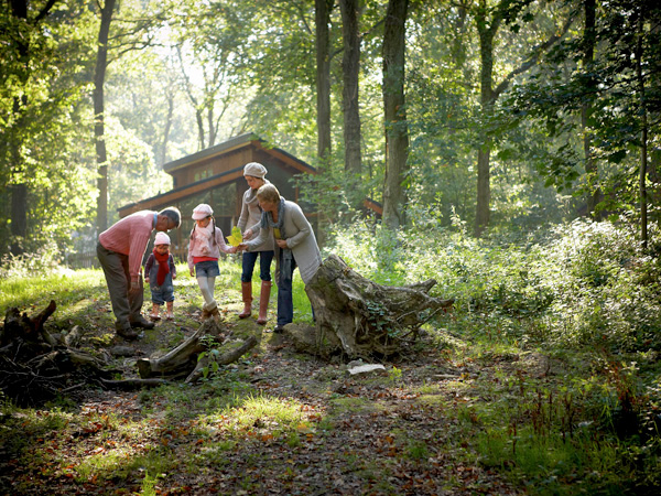 Have a Forest of Dean break this Autumn and bag a 10% discount