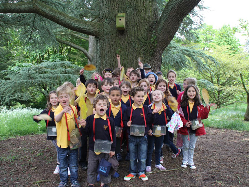 Batsford Arboretum launches new Forest School