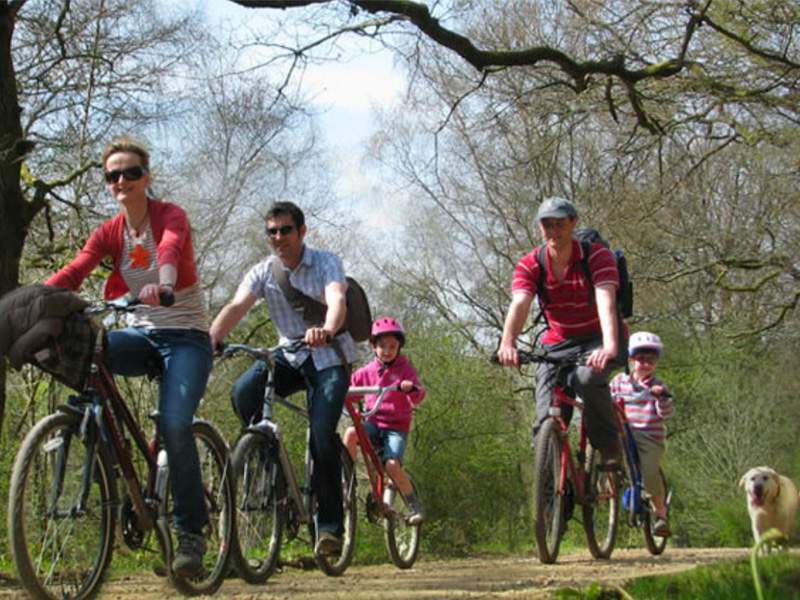 Family cycling in the Forest of Dean with Pedalabikeaway