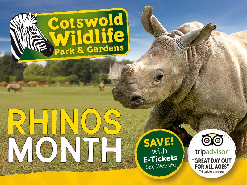 Rhino Month at Cotswold Wildlife Park & Gardens