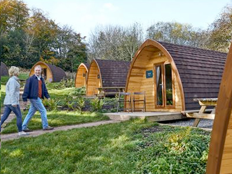 FLASH SALE: Glamping Pods at Whitemead Forest Park ONLY £32!