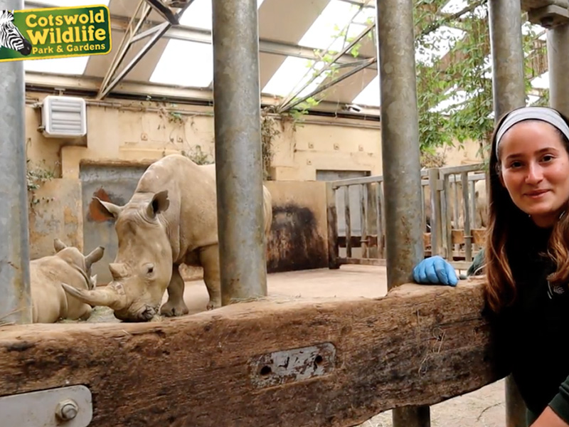 Cotswold Wildlife Park launches CotsWild Academy