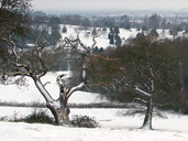 Enter your winter snaps of Gloucestershire for your chance to win £250 Jessops vouchers!